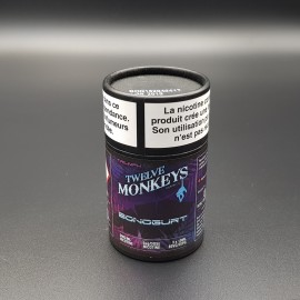 Bonogurt Twelve Monkeys